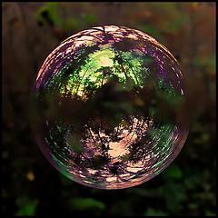 bubble-economy